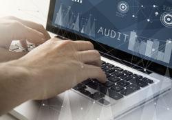 telecom-audits